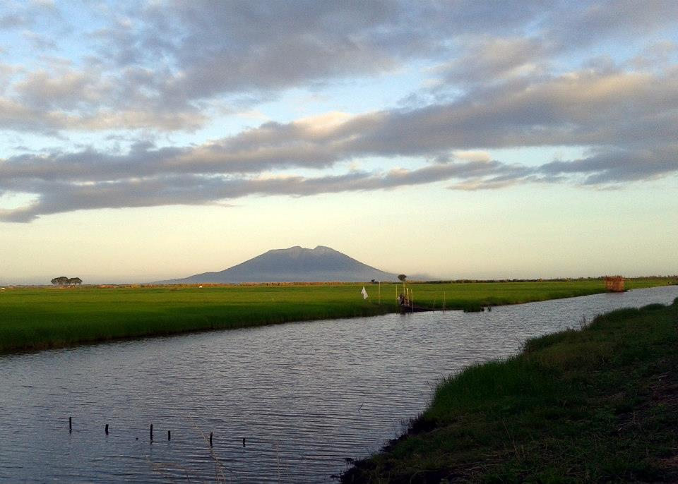 View of Mount Arayat. Photo by Cristina Cinco.
