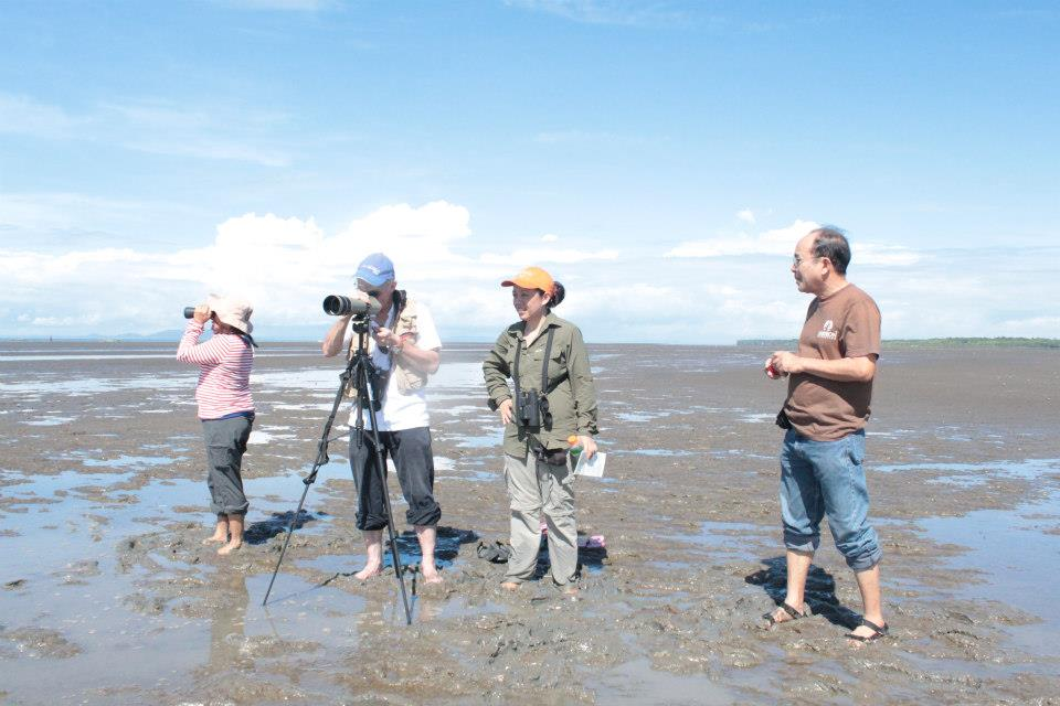Counting birds from the mudflats. Photo by Lisa Paguntalan.