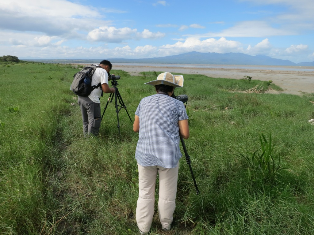 Counting birds in the Cabusao Wetlands. Photo by Carmela Balcazar.