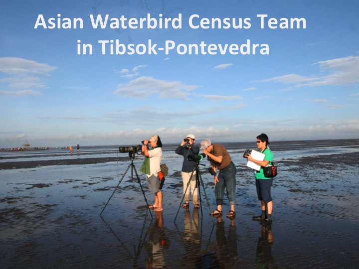 2013 Asian Waterbird Census