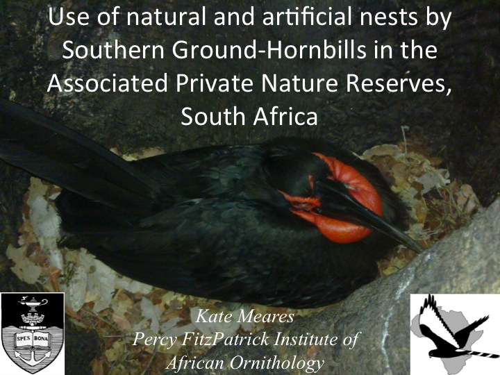 Kate Meares, 6th International Hornbill Conference, slide 1 Nesting attempts of Southern Ground-Hornbills in the Associated Private Natures Reserves (APNR), South Africa, have been monitored since 2000.  A permanent research base is located in the APNR and we at the Percy FitzPatrick Institute  investigate home range and habitat use by means of satellite tracking, nesting attempts, and changes in group compositions over time. �