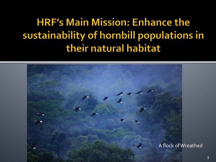 Dr. Woraphat Arthayukti, 6th International Hornbill Conference Manila, Philippines - Slide 3