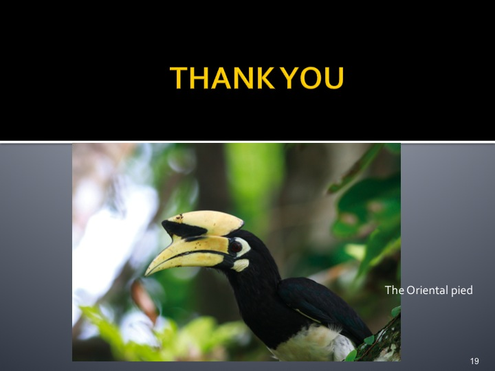 Dr. Woraphat Arthayukti, 6th International Hornbill Conference Manila, Philippines - Slide 19