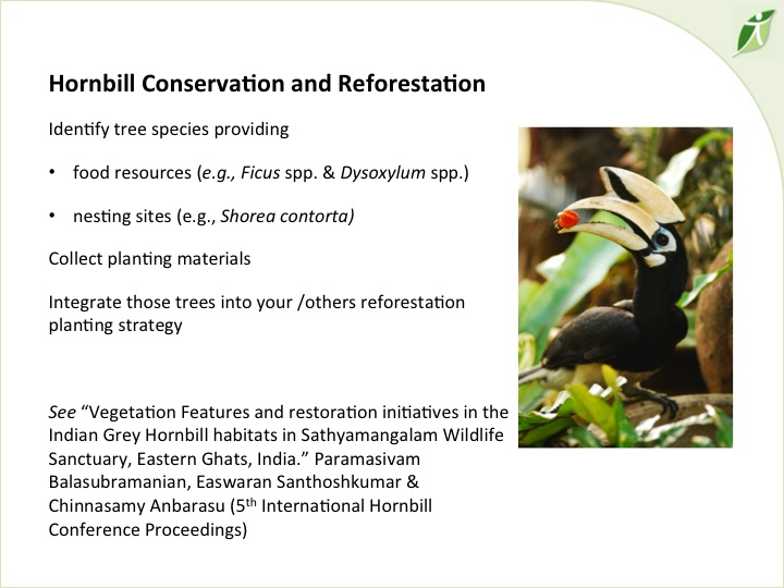 6th International Hornbill Conference, Dr. David Neidel, slide 36 http://www.flickr.com/photos/prasit_chansareekorn/8237673464/ �