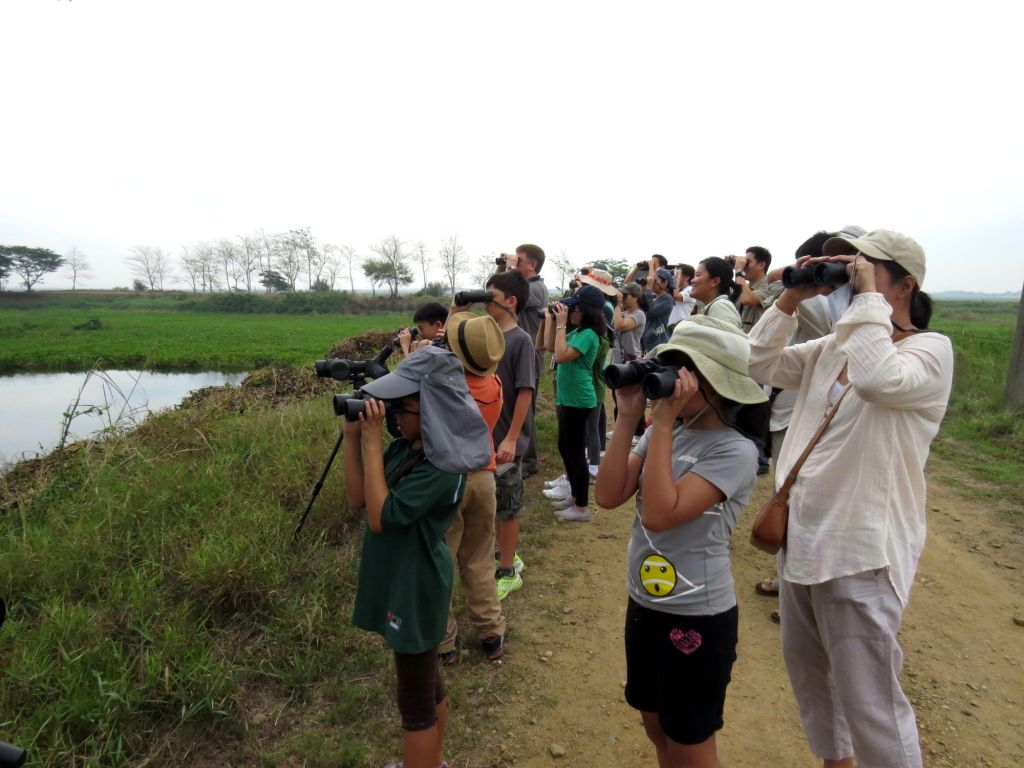 Kids and adults using their binoculars to spot the birds in the marsh. Photo by Maia Tanedo