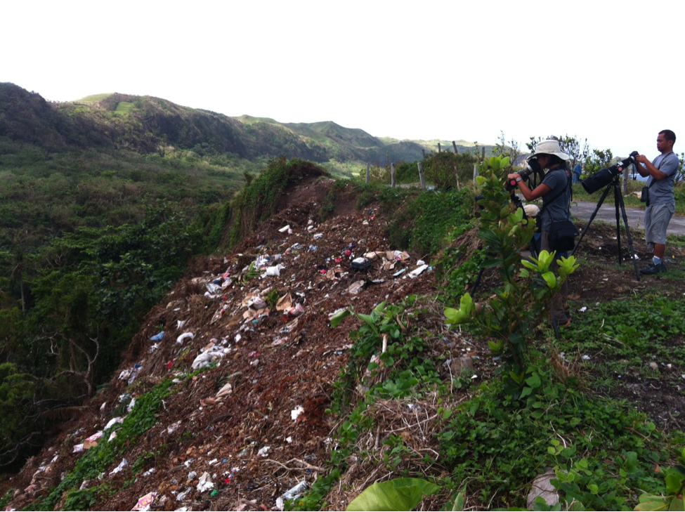 Birders/Photographers delight! A dump site. Photo by Kitty Arce.