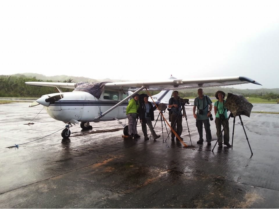 Runway birding on a rainy day! Photo by Irene Dy.