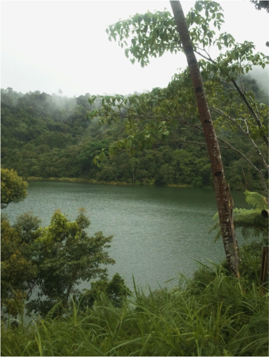 Lake Maragang within Mt. TimolanProteced Landscape, refuge for Philippine Ducks.  Photo by Adri Constantino.
