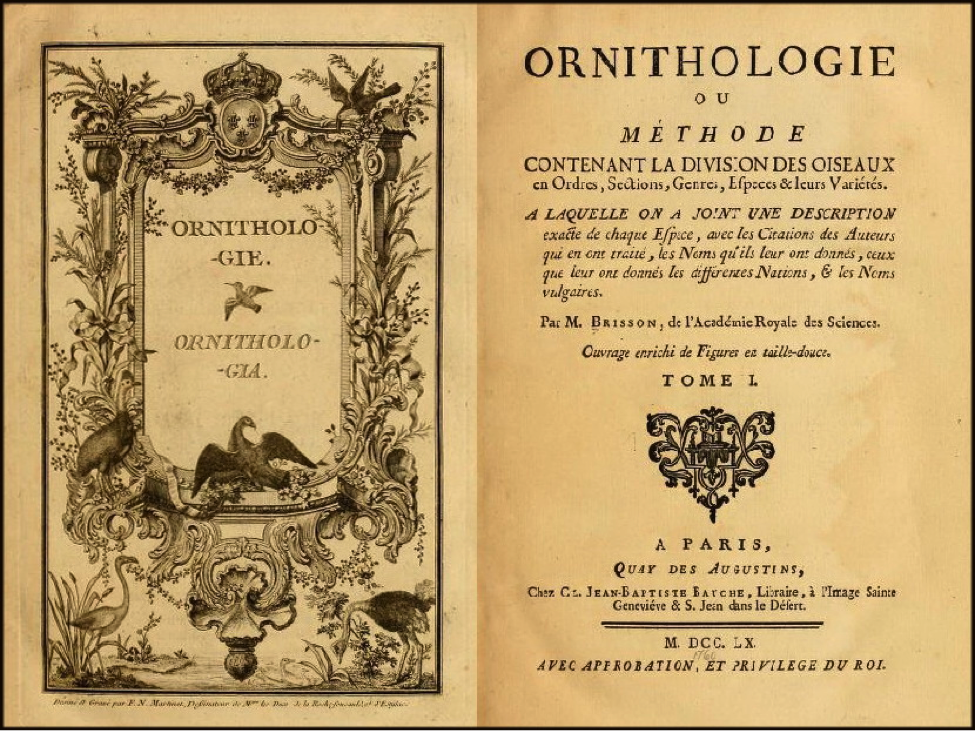 Title page of volume 1 of Brisson's Ornithologie (1760)