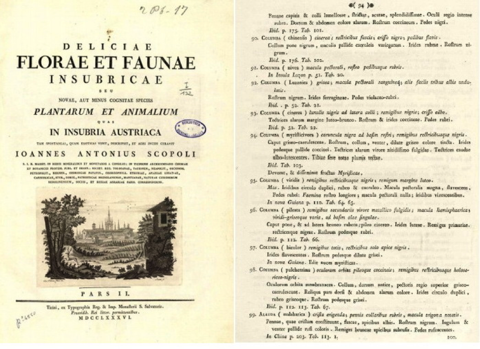 Left: Title page of Scopoli's Deliciae Florae et Faunae Insubricae (1786). Right: page 94 with description of Luzon Bleeding-heart (bird number 92 Columba Luzonica)