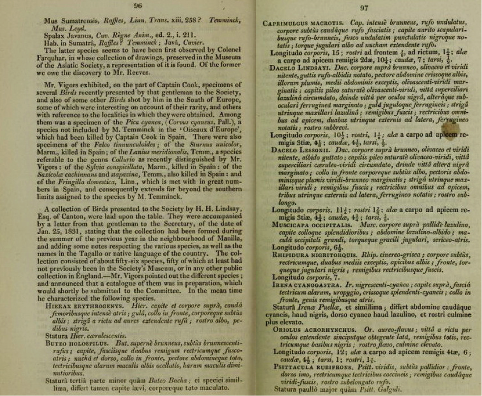 Pages 96 and 97 of Proceedings of the Zoological Society 1830-31 (Vigors' account starts in the middle of page 96 on the left side)
