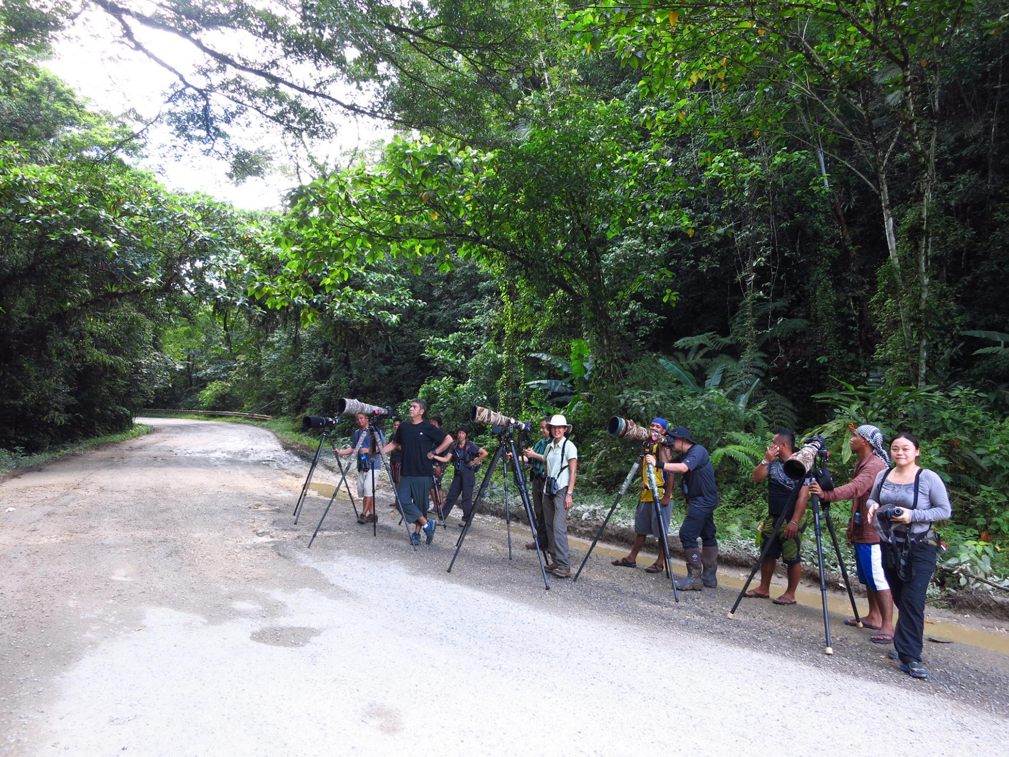 Roadside birding was very productive! Photo by Ixi Mapua.