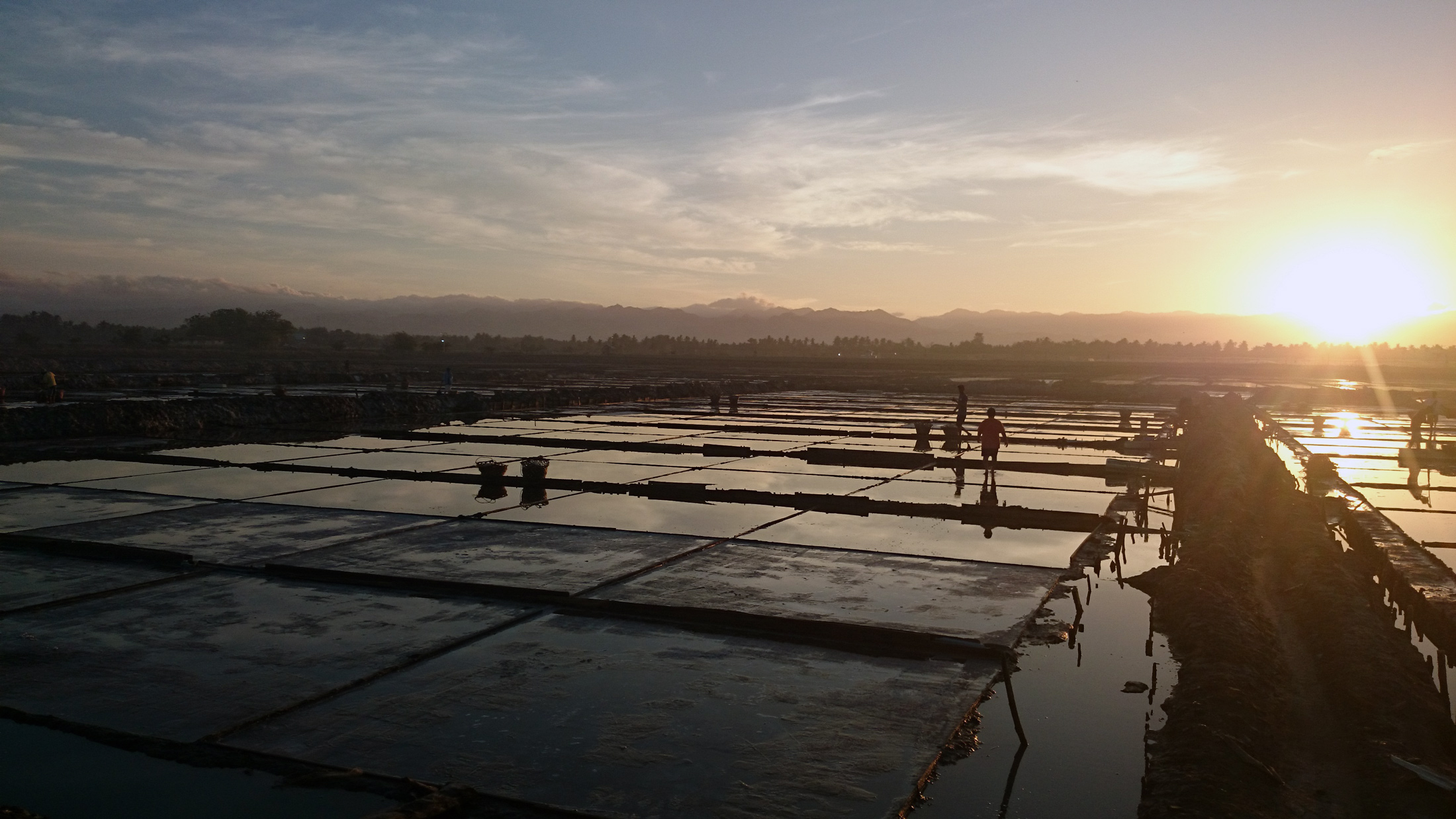 Already working the salt pans at dawn. Photo by Pete SImpson.