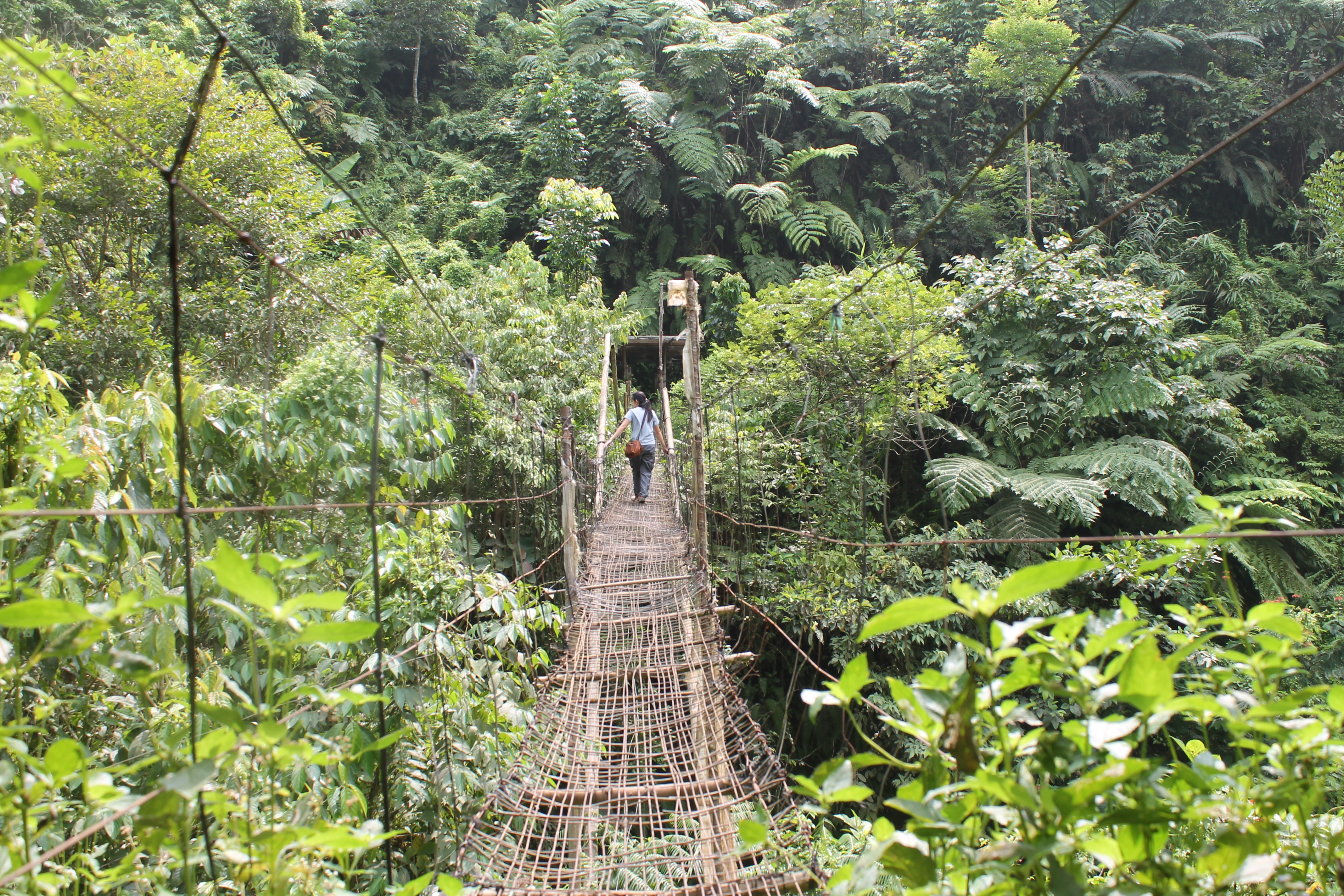 An exciting crossing high over the river on this hanging bridge. Photo by Trinket Constantino.